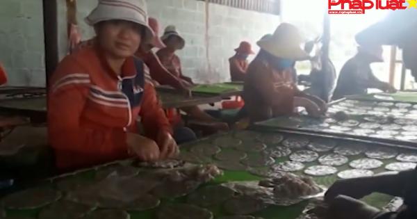 Kinh hoàng cơ sở dùng hóa chất lạ làm cá bò khô