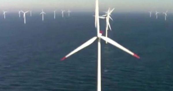 Tập đoàn Google sử dụng năng lượng tái tạo