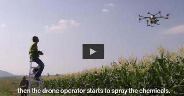 Nông dân TQ sử dụng thiết bị bay không người lái phun thuốc trừ sâu