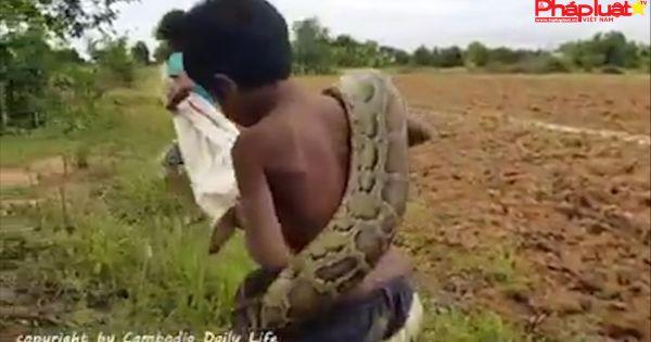 Trẻ em vùng nông thôn săn rắn