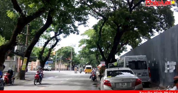Di dời cây xanh chuẩn bị mở rộng đường vào sân bay Tân Sơn Nhất