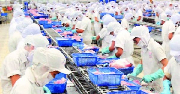 DN muốn tăng năng suất lao động nhưng sợ... tăng lương