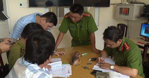 C.A Bà Rịa Vũng Tàu: Bắt giữ đối tượng mua bán, tàng trữ động vật quý hiếm