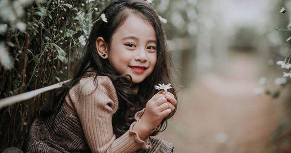 Bé gái được ví như tiểu Chi Pu đang tạo dáng bên cánh đồng hoa cúc họa mi khiến dân mạng đốn tim