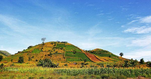 Chinh phục núi lửa Chư Đăng Ya và ngắm dã quỳ trải vàng rực rỡ
