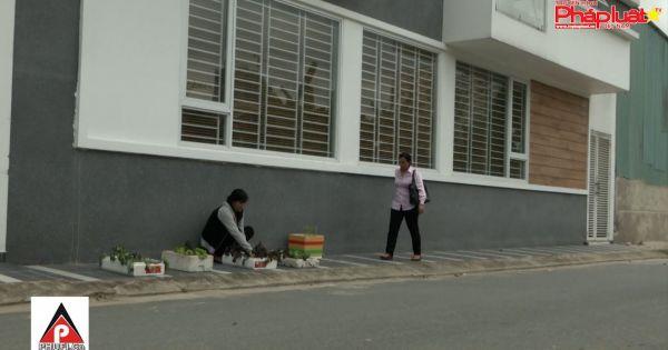 Đưa pháp luật bằng phim ảnh vào cuộc sống - Tập 17: Trồng rau ngoài đường
