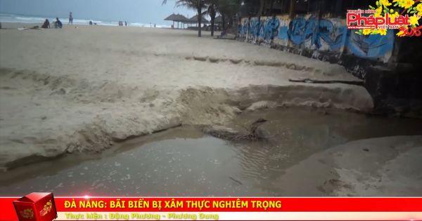 Đà Nẵng: Bãi biển bị xâm thực nghiêm trọng