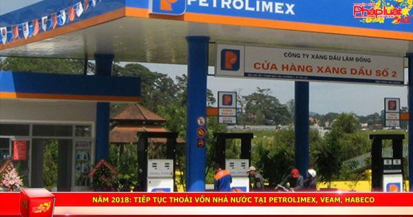Năm 2018: Tiếp tục thoái vốn Nhà nước tại Petrolimex, VEAM, Habeco