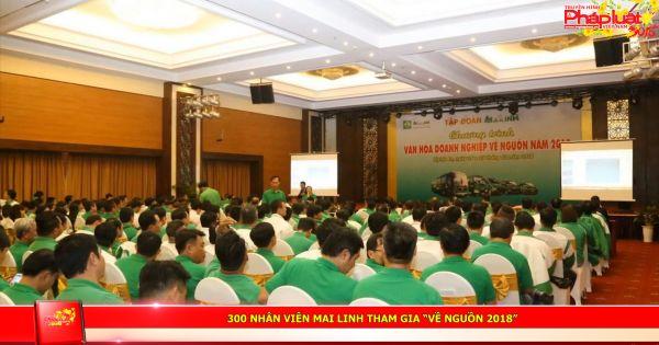 """300 nhân viên Mai Linh tham gia """"Về nguồn 2018"""""""
