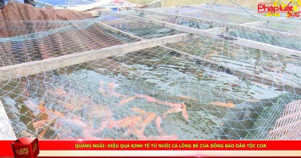 Quảng Ngãi: Hiệu quả kinh tế từ nuôi cá lồng bè của đồng bào dân tộc Cor