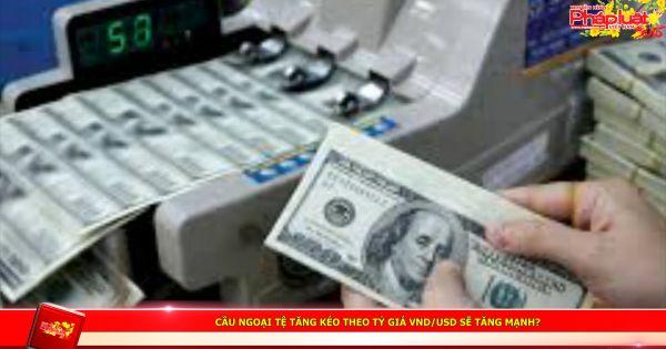 Cầu ngoại tệ tăng kéo theo tỷ giá VND/USD sẽ tăng mạnh?