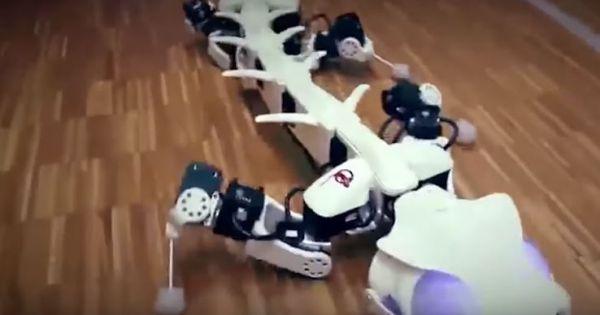 10 Robot Động Vật Hiện Đại Nhất Được Chế Tạo Khiến Bạn Kinh Ngạc
