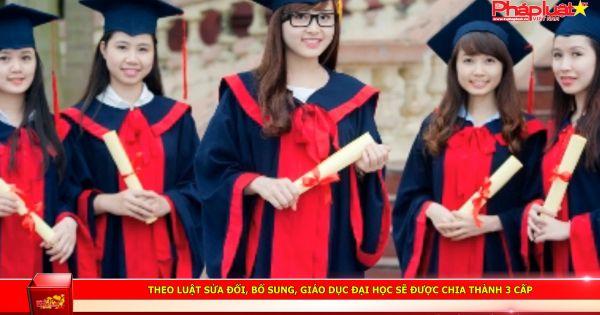Giáo dục đại học sẽ được chia thành 3 cấp