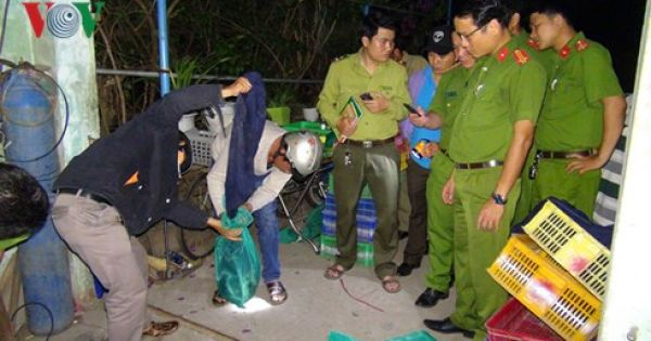 Quảng Nam: Triệt phá đường dây buôn bán động vật hoang dã