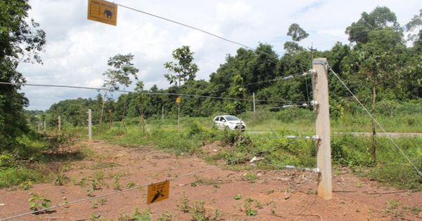 Nghệ An: Khởi tố chủ tịch và phó chủ tịch xã lạm quyền bán 283 lô đất