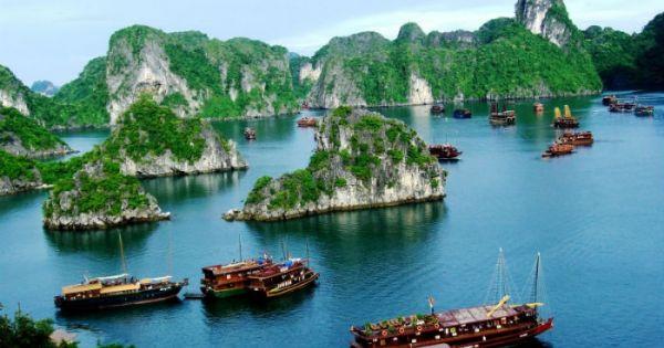 Dự kiến kết nối tour du lịch vịnh Hạ Long – Cát Bà