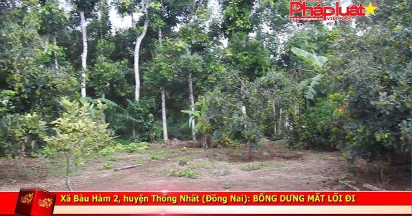 Xã Bàu Hàm 2, huyện Thống Nhất (Đồng Nai): Bỗng dưng mất lối đi