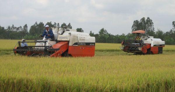 """Bắt 2 nghi phạm ép các chủ máy gặt lúa thuê nộp """"lệ phí"""""""