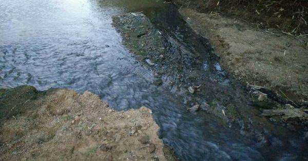 Xả thải gây ô nhiễm, Bisuco bị phạt gần 2 tỉ đồng