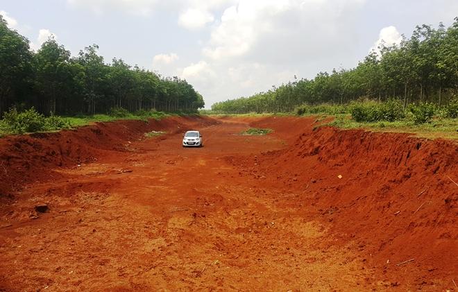 Đắk Lắk: Vườn cây người dân chết khô do chờ dời trạm BOT