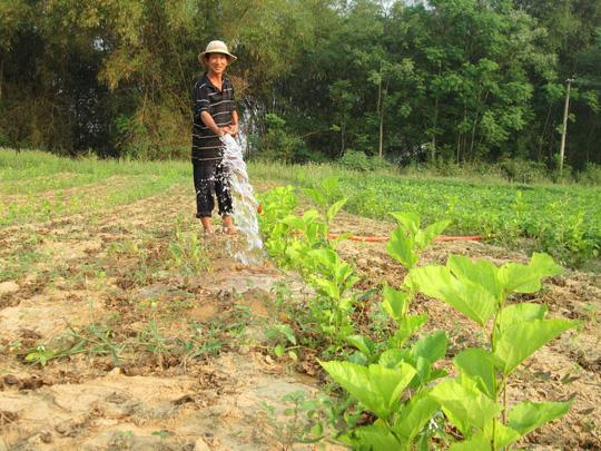 Doanh nghiệp Mỹ chi 50 triệu USD làm tơ tằm xuất khẩu tại Quảng Nam