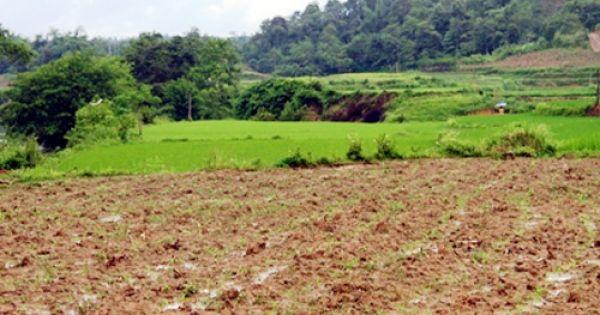 Hà Nội: Hàng chục nhân khẩu cầu cứu vì việc đền bù chưa thỏa đáng