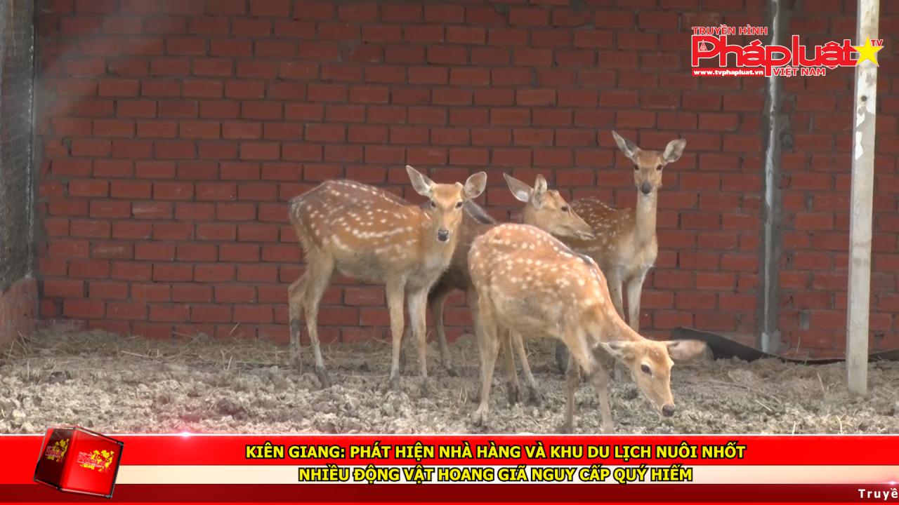 Kiên Giang: Phát hiện nhà hàng và khu du lịch nuôi nhốt nhiều động vật hoang giã nguy cấp quý hiếm