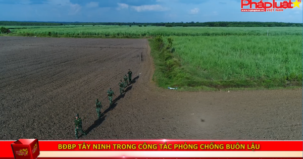 Bộ đội Biên phòng Tây Ninh trong công tác phòng chống buôn lậu