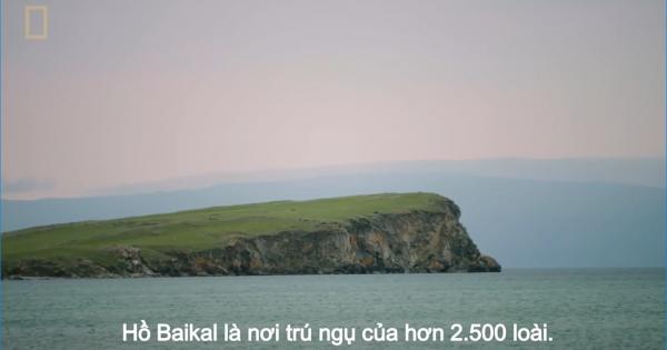 Khám phá Baikal, hồ nước 25 triệu năm tuổi sâu nhất thế giới