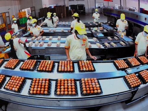Công ty Ba Huân nhờ Thủ tướng can thiệp để hủy hợp tác với VinaCapital