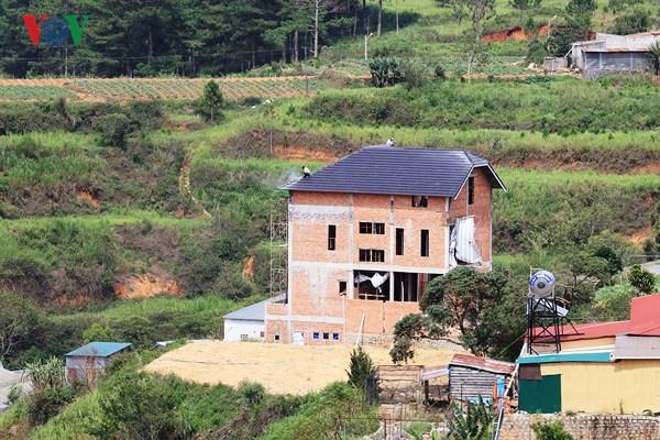 Xử lý nghiêm 4 biệt thự xây dựng không phép trên đất rừng Đà Lạt