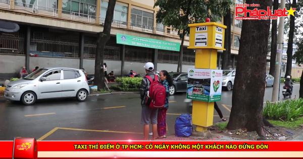 Taxi thí điểm ở TP HCM: Có ngày không một khách nào đứng đón