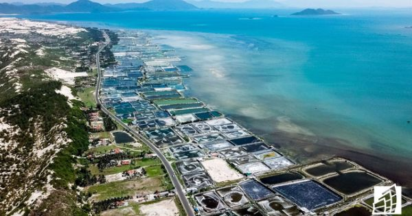 Bà Rịa - Vũng Tàu yêu cầu dừng ngay việc phân lô bán nền đất ruộng muối