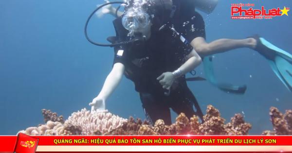 Quảng Ngãi: Hiệu quả bảo tồn san hô biển phục vụ phát triển du lịch Lý Sơn