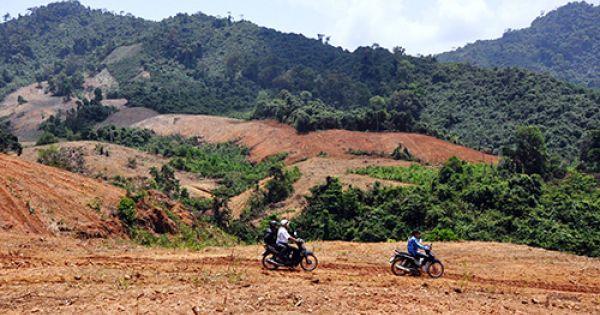 Công ty Cao su Quảng Nam có nhiều sai phạm về đất đai