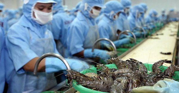Điểm báo 12/09/2018: Mỹ giảm mạnh thuế chống bán phá giá tôm Việt Nam