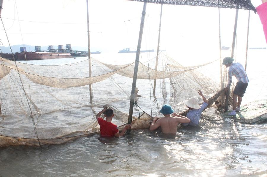 Ngăn chặn khai thác thủy sản trái pháp luật khu vực biên giới biển Phú Yên
