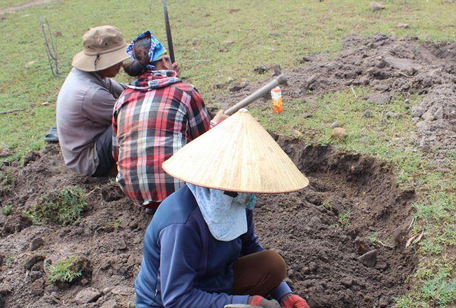 """Phú Yên: """"Xẻ thịt"""" lòng hồ thủy điện để đào đá đen"""