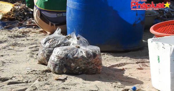 Chợ hải sản tự phát gây ô nhiễm tại Đà Nẵng