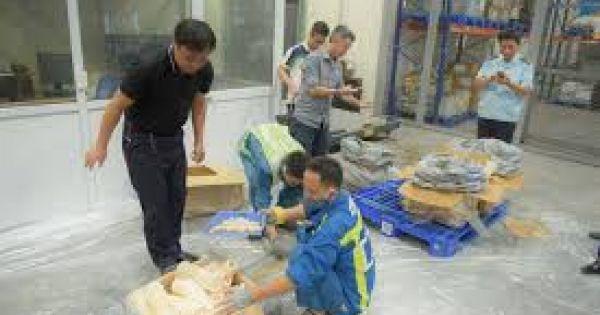 Bắt giữ gần 1 tấn ngà voi, vẩy tê tê tại sân bay Nội Bài
