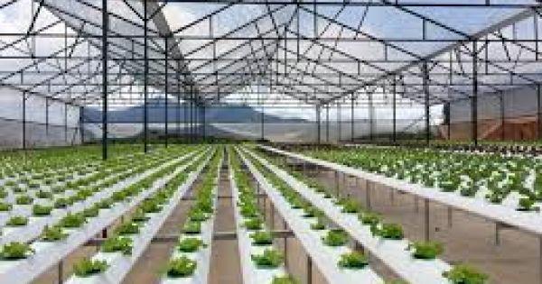 """""""Nông nghiệp ASEAN cần đẩy mạnh ứng dụng công nghệ 4.0"""""""