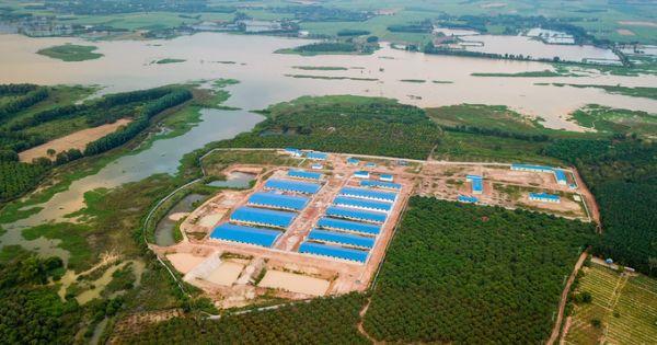 Buộc tháo dỡ trang trại nuôi heo xây dựng trái phép bên bờ hồ thủy điện Trị An