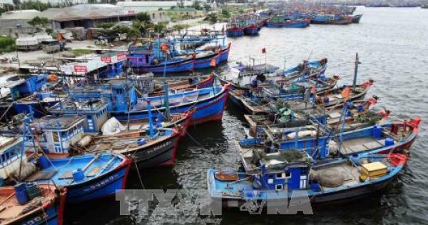 Dừng xây dựng tuyến luồng Thọ Quang tại Đà Nẵng