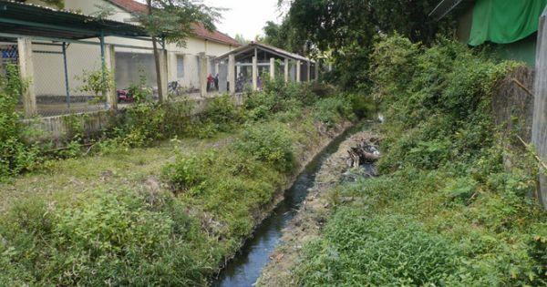 Bình Định: Nước thải từ Cụm công nghiệp Cát Trinh gây ô nhiễm môi trường
