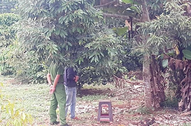 Chủ tịch xã chết trong tư thế treo cổ trên cây sầu riêng
