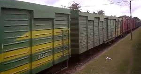 Để đường sắt an toàn, cần có 7.400 tỉ đồng