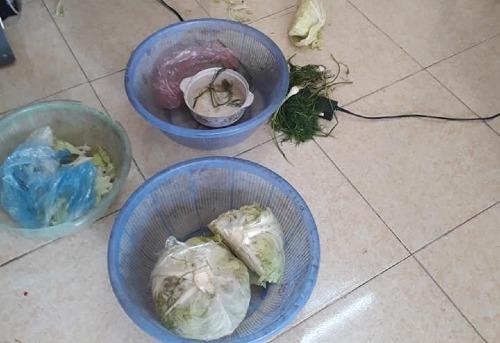 Phụ huynh tố cáo trường cho trẻ ăn rau thối, tôm ươn
