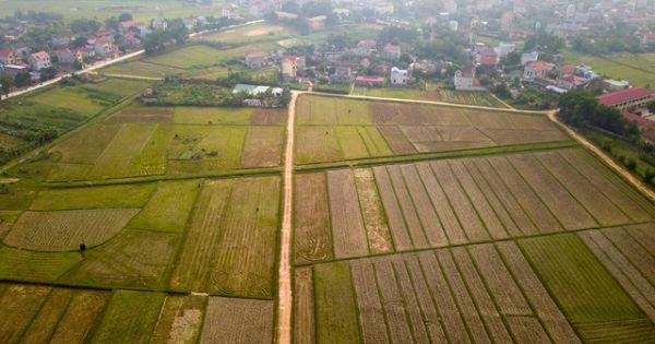 Toàn cảnh khu đất 100 ha dự kiến làm trường đua ngựa tại Hà Nội