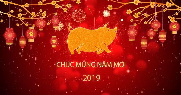 Cùng khách mời Truyền Hình Pháp Luật Việt Nam chúc mừng Xuân Kỷ Hợi 2019