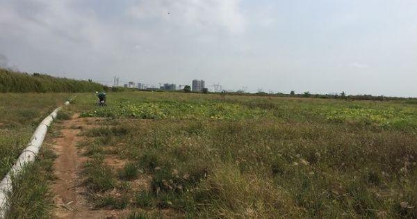 Cận cảnh Dự án KCN Phong Phú bị UBND TPHCM chỉ đạo thanh tra